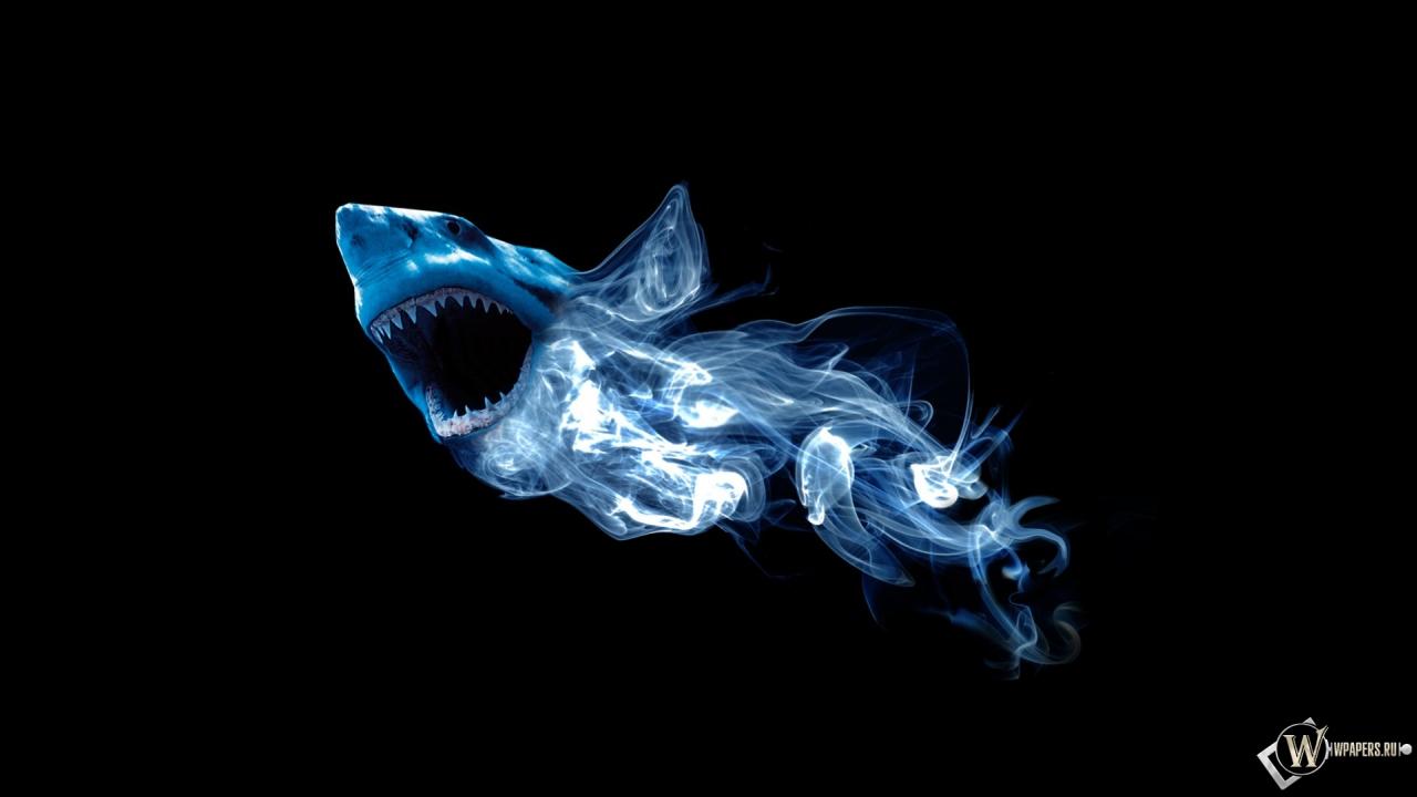 Обои абстракция акулы абстракция