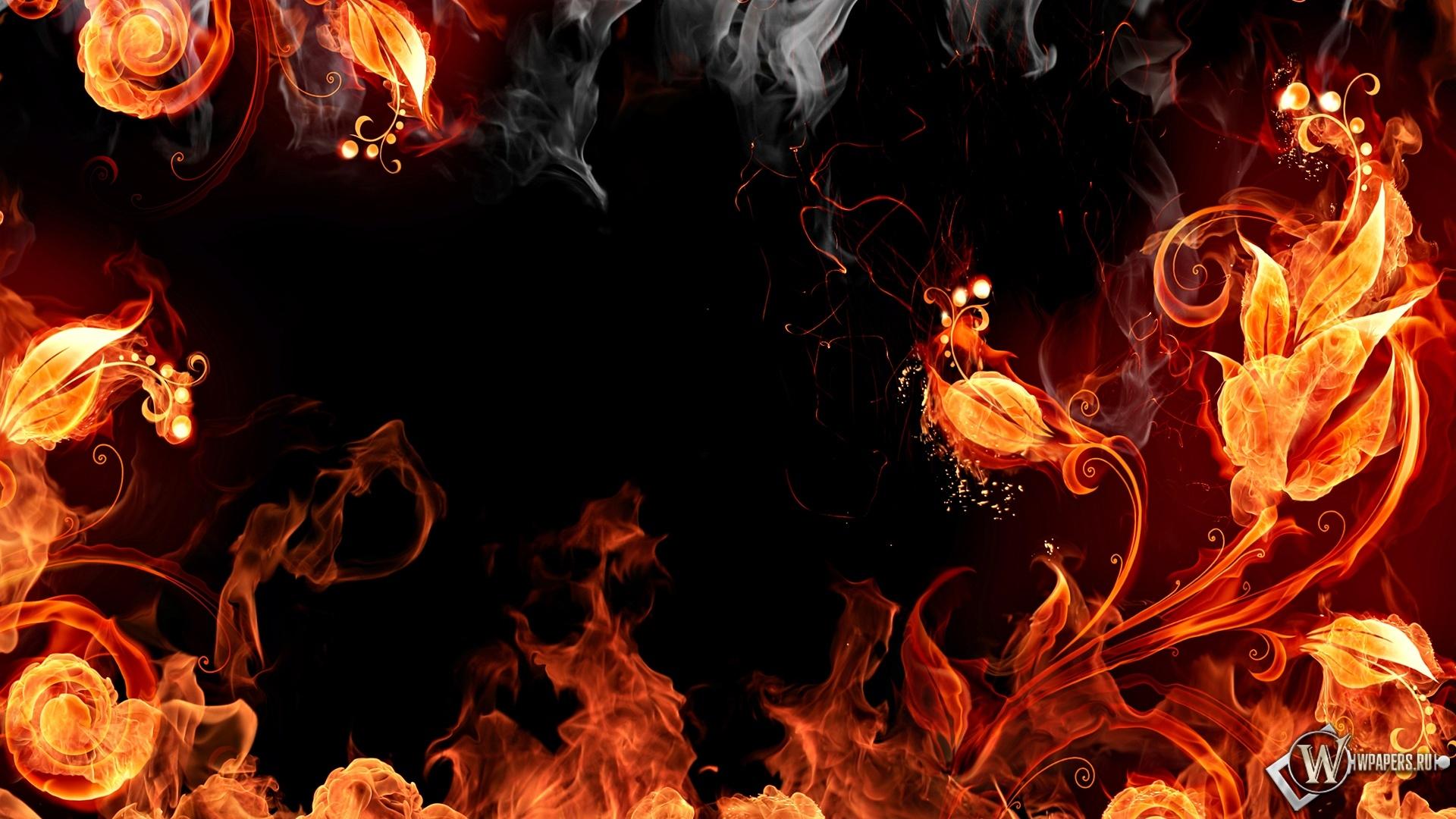 Огненые цветы 1920x1080