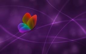 Обои абстракция бабочки: Линии, Бабочка, Цвет, Сиреневый, Абстракции
