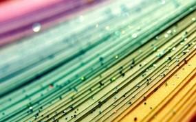 Обои Разноцветные блёстки: Линии, Зелёный, Красный, Желтый, блестки, Абстракции