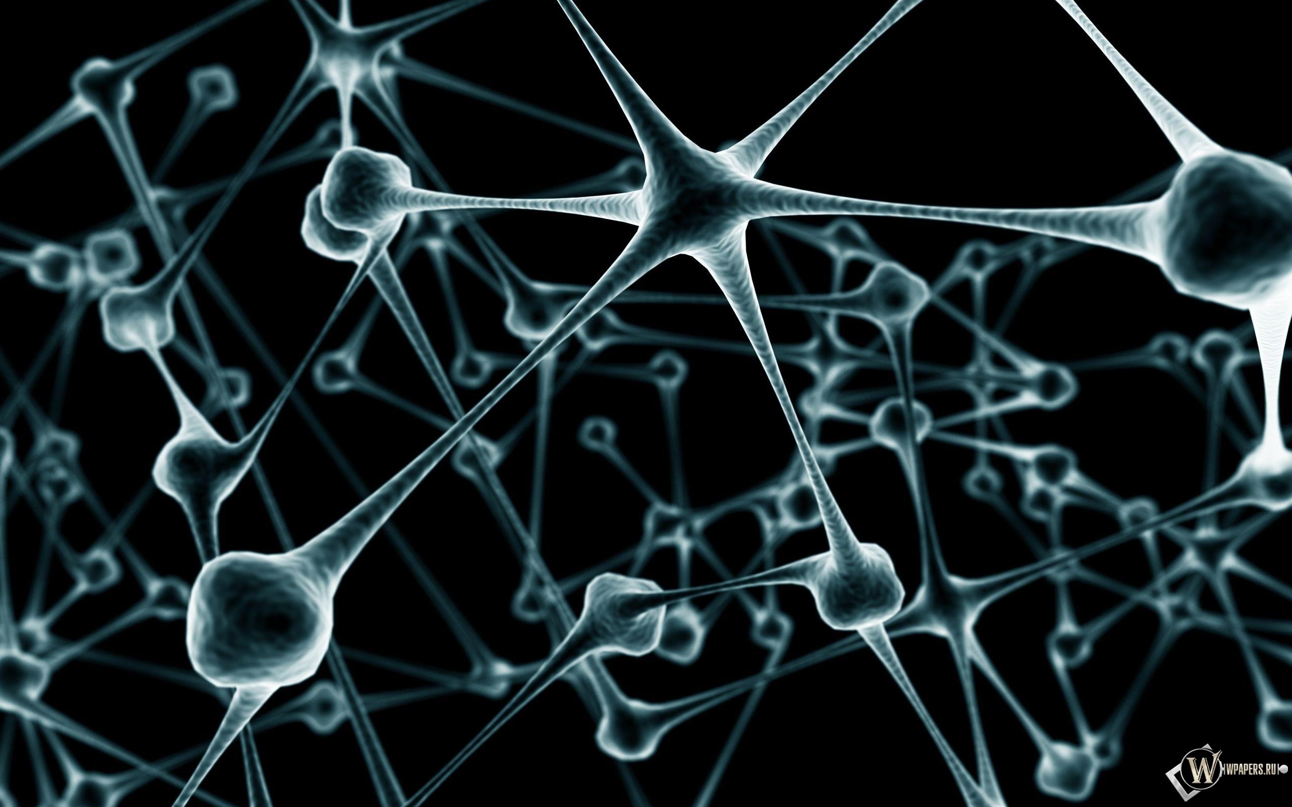 Нейроны 2560x1600