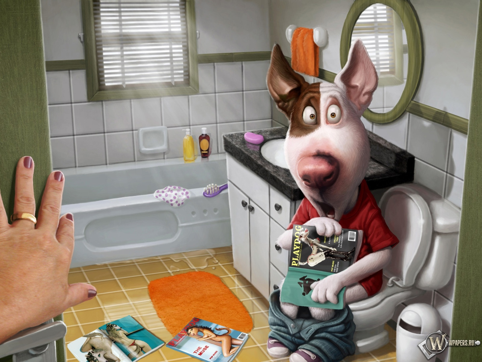 Собака в ванной комнате 1600x1200