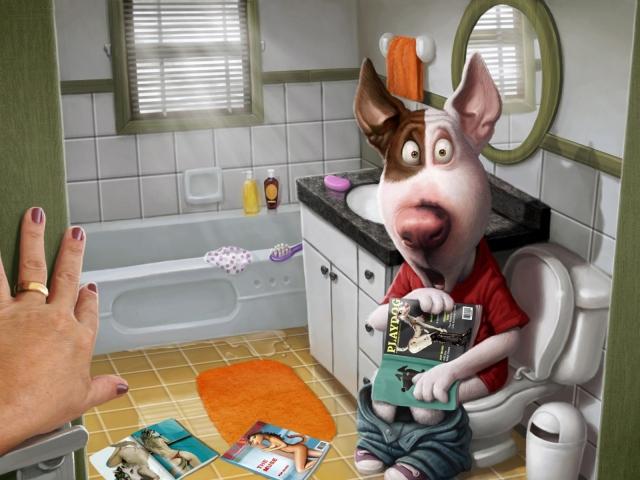 Собака в ванной комнате