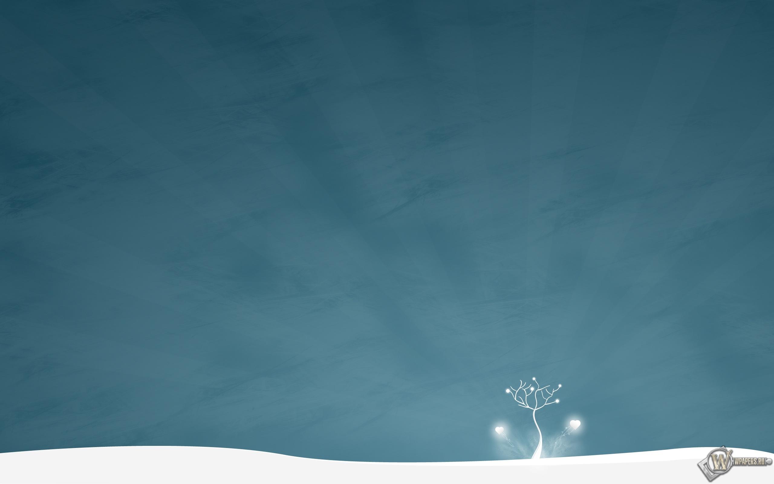 Зимнее дерево 2560x1600