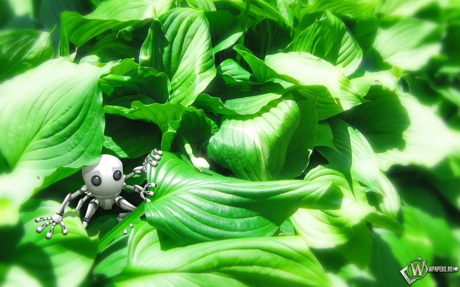 Робот в зелени 1920x1200