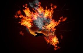 Обои Огненный череп: Огонь, Пламя, Череп, 3D Графика