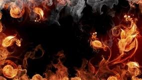 Обои Огненные цветы: Огонь, Дым, Цветок, Рендеринг