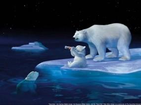 Обои Умка: Белые медведи, Coca-Cola, Рендеринг