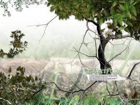 Обои 3D природа: Птичка, Божья коровка, Листва, Дерево, Рендеринг