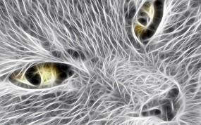 Обои 3D шкока: 3D графика, Кошка, Аэрография, Рендеринг
