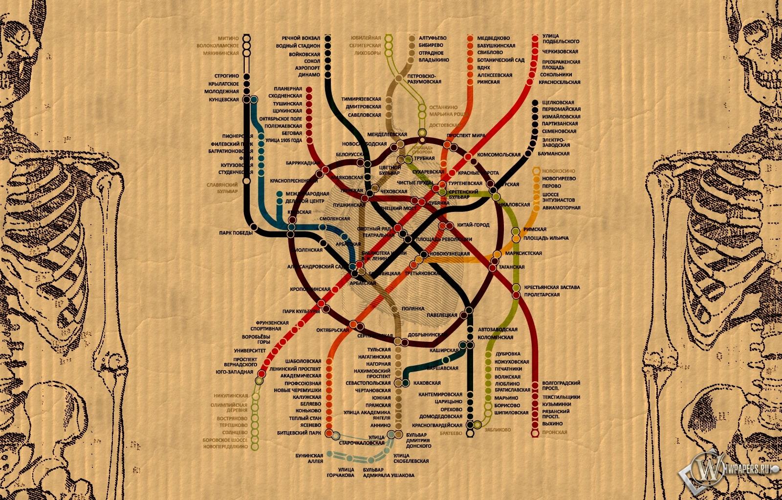 3д схема метро москвы