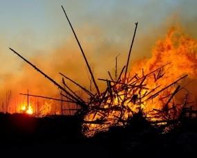 Обои Лесной пожар: Огонь, Пожар, Палки, Костер, Разное