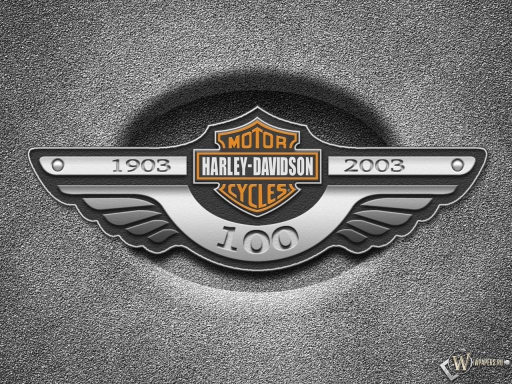 Harley motorcycle essay