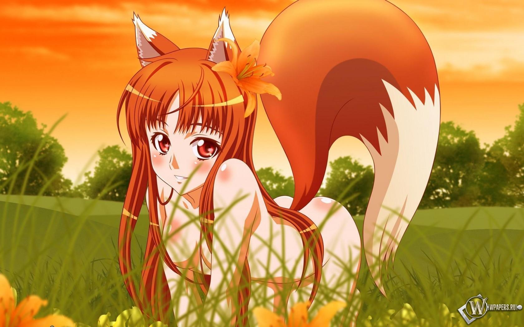 аниме картинки девочка лисичка: