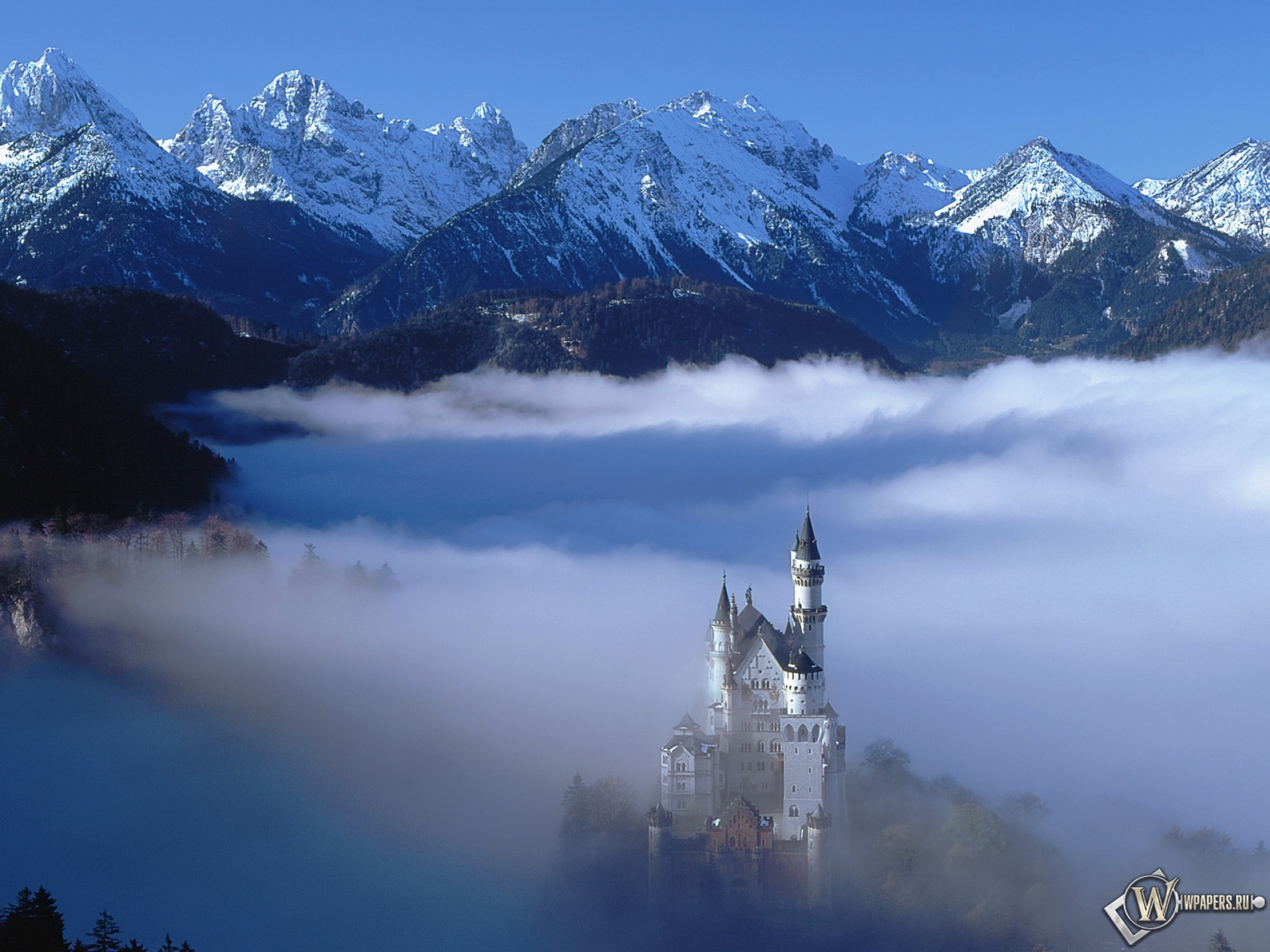 Обои trees, германия, замок, fog, туман, Germany. Природа foto 18