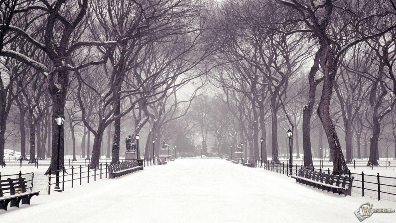 Картинки нью йорка зимой