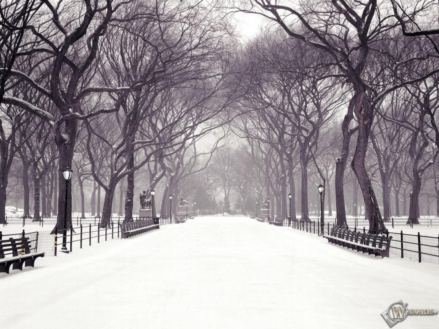 Картинки зима размер 1400х1050