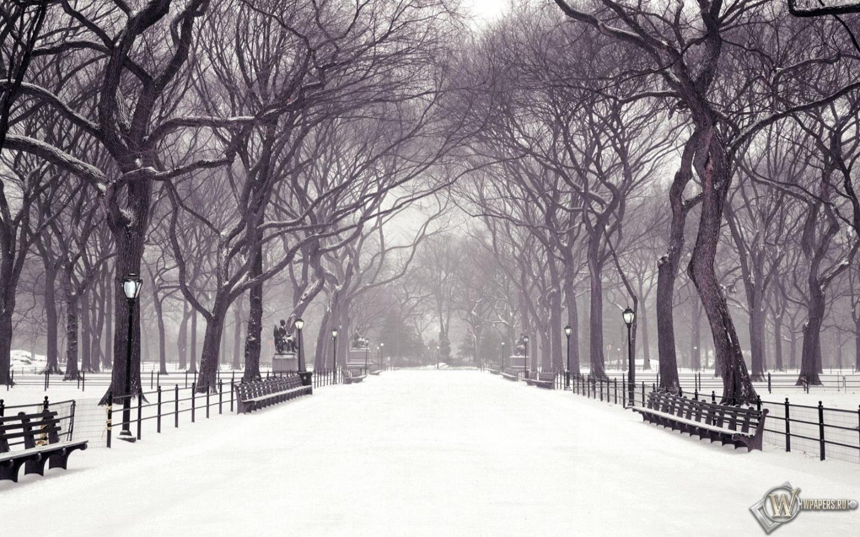 зима город