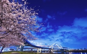 Обои Цветение сакуры в Японии: Фонари, Река, Мост, Япония, Сакура, Города