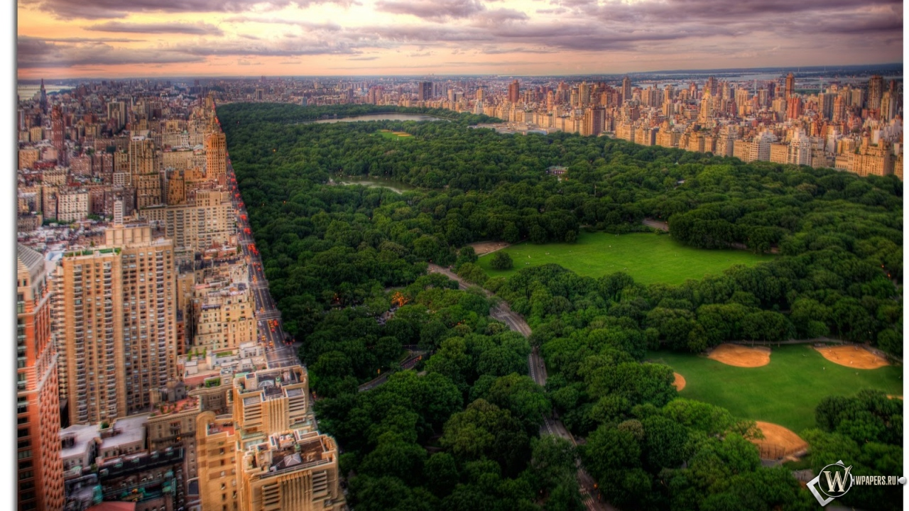 Обои центральный парк нью йорк на