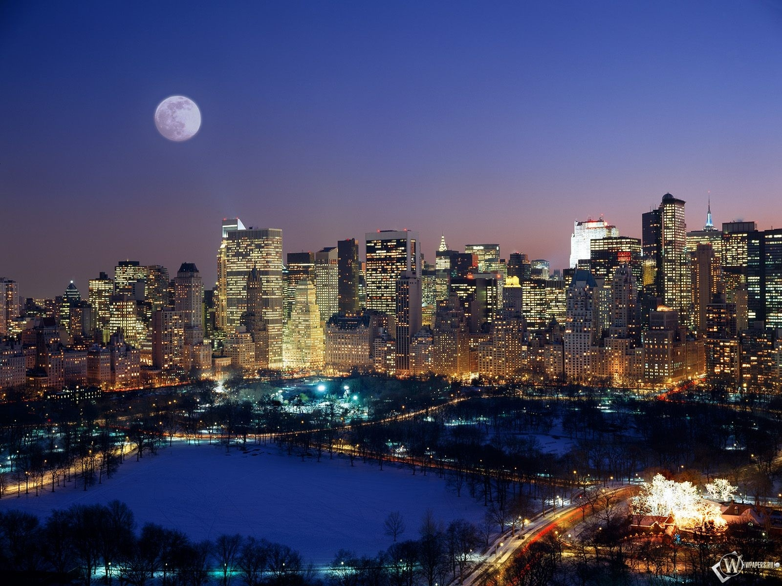 New York Urban Jungle 1600x1200