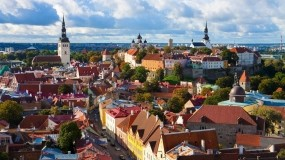 Обои Крыши Таллина: Город, Деревья, Крыши, Таллин, Прочие города