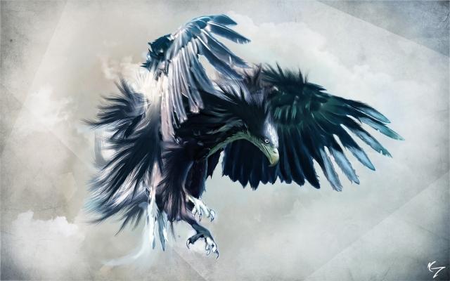 Орёл полёт обоев 66 птица обоев 53 орёл
