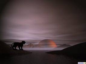 Обои 3D Тигренок: Туман, Планета, Тигренок, Фэнтези