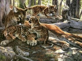 Обои Картина пума с котятами: Картина, Котята, Пума, Хищники, Фэнтези