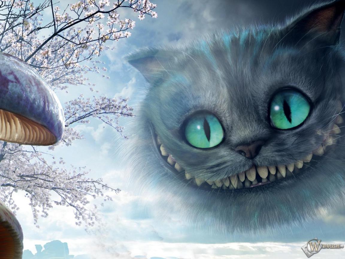 Алиса в стране чудес кот гриб алиса в