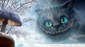 Обои Алиса в Стране чудес: Кот, Гриб, Алиса в Стране чудес, Фэнтези