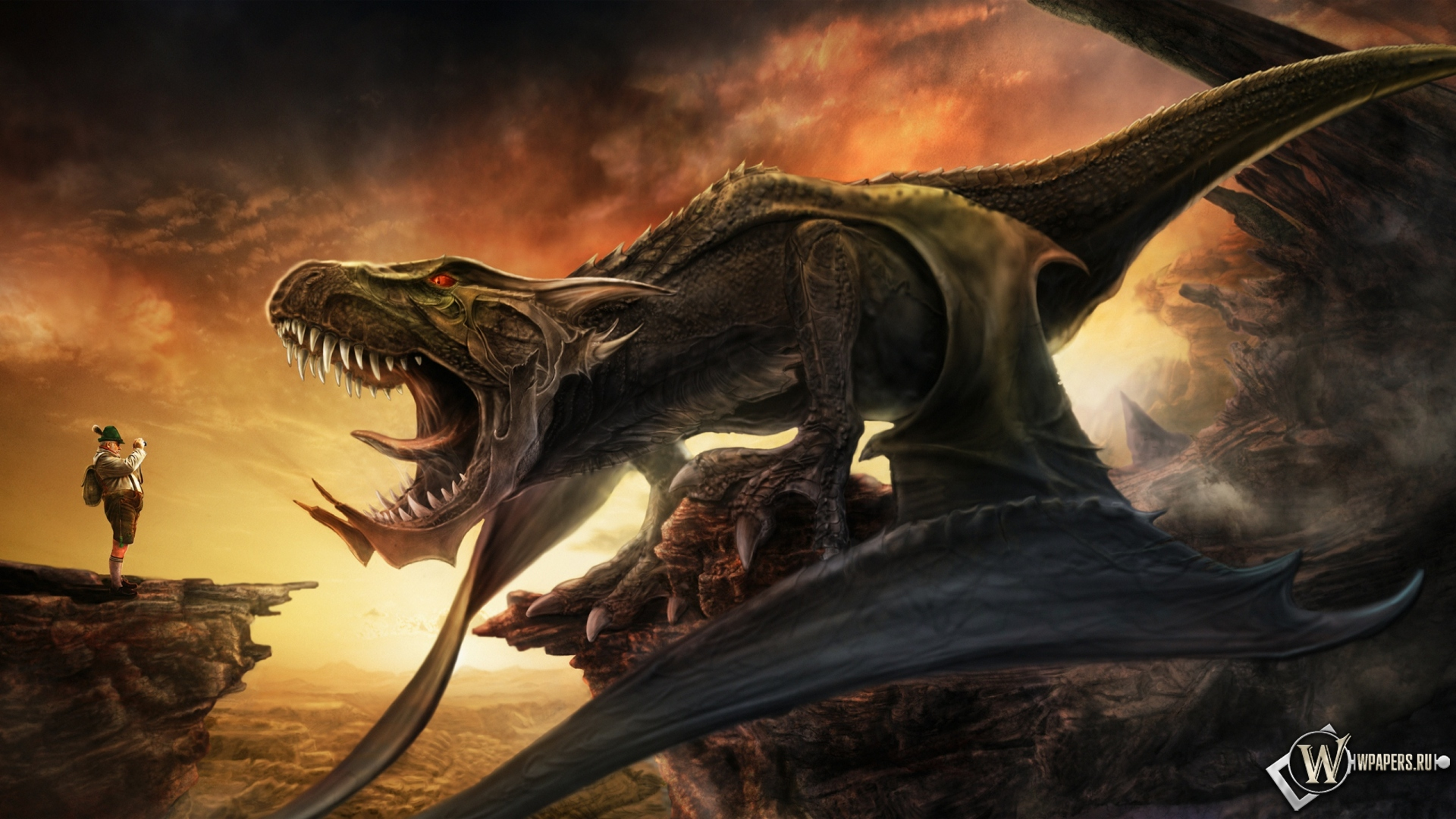 Обои фото дракона дракон фотограф