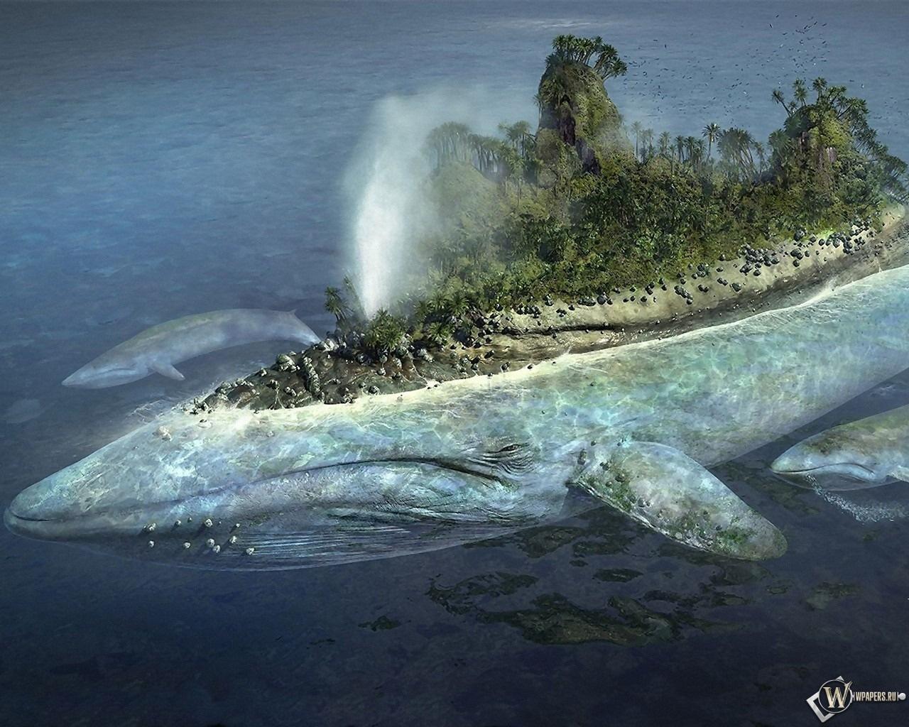 Остров на ките 1280x1024