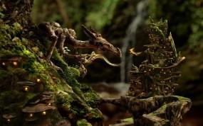 Обои Дракон и фея в лесу: Лес, Фея, Дракон, Фэнтези - Природа