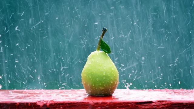 Дождливая Груша