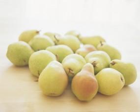 Обои Грушки: Груши, Плоды, Еда