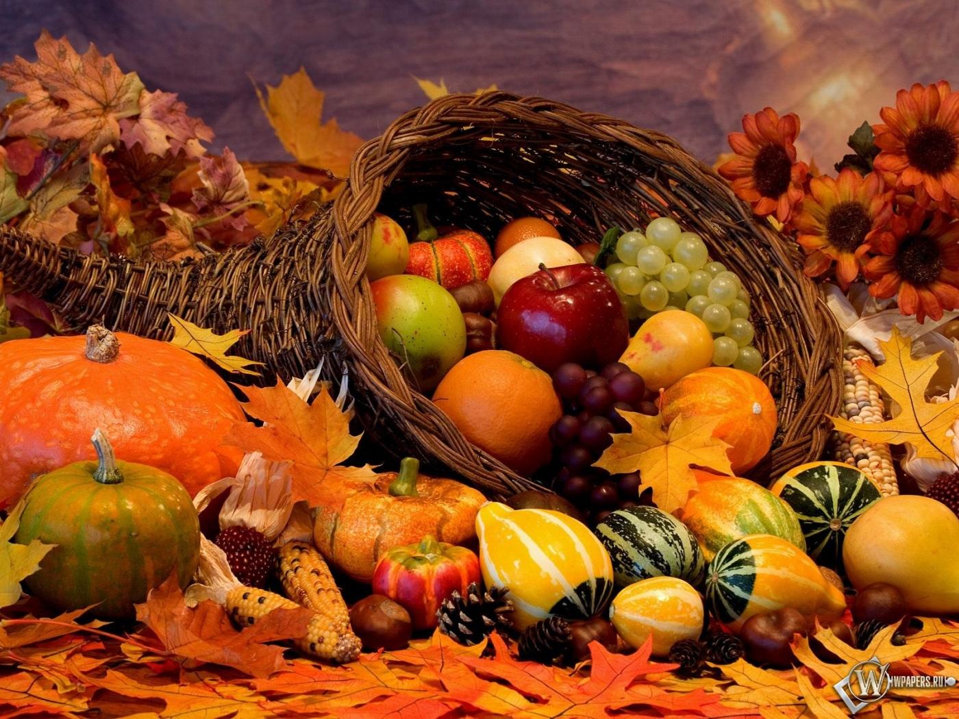 Обои для рабочего стола яблоки осень