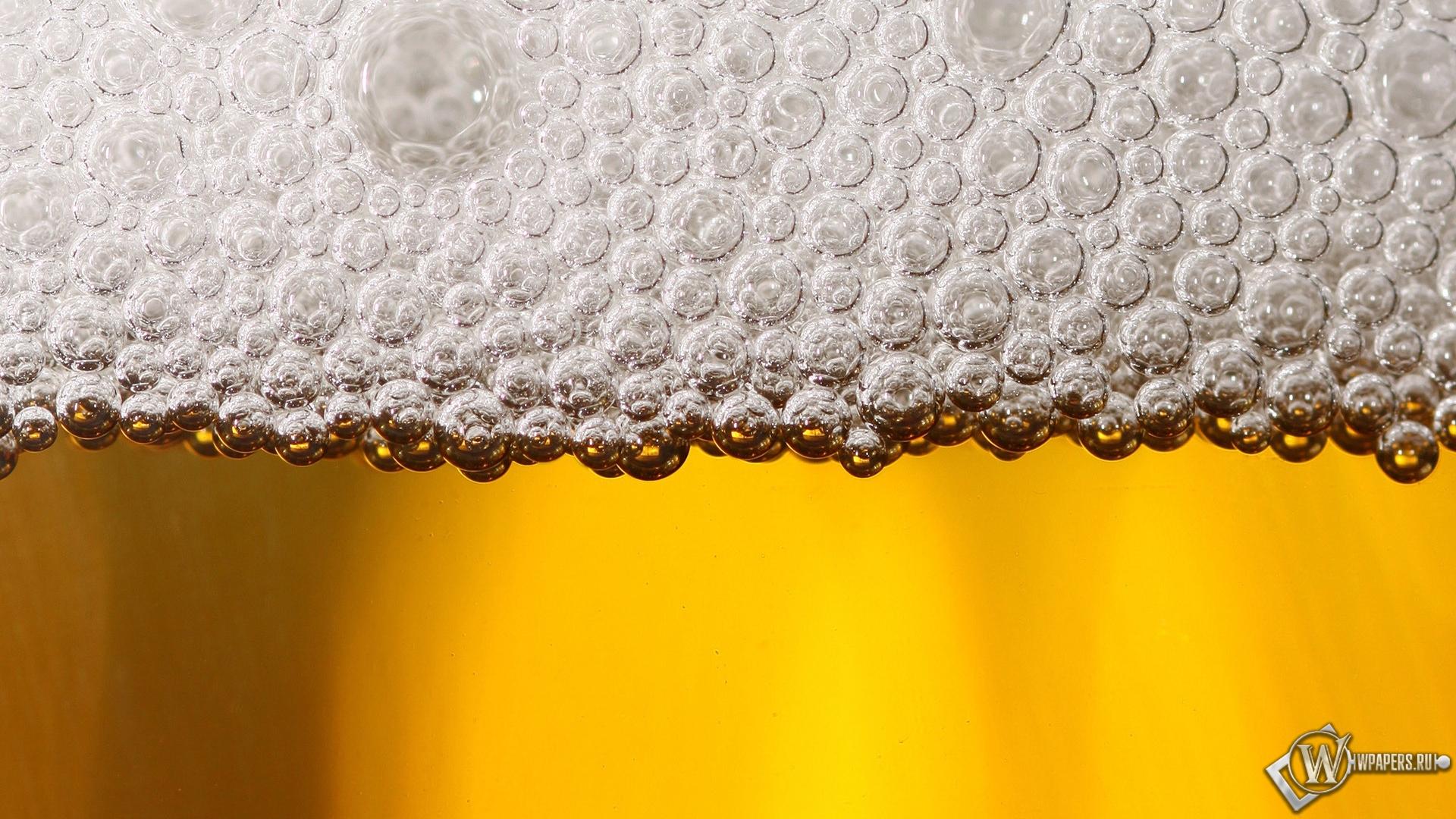 Обои пиво алкоголь пиво пена 1920x1080