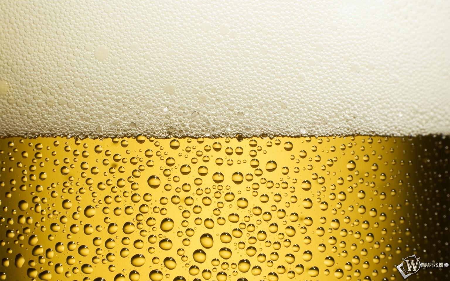 все пиво картинки