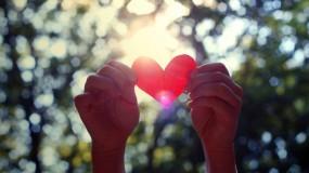 Обои День Святого Валентина: Сердце, Руки, День святого Валентина, Валентинка, Праздники