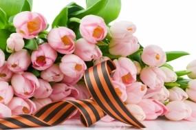 Обои День Победы: Цветы, Тюльпаны, День Победы, Лента, День победы