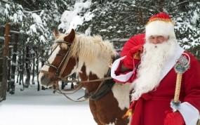 Обои Дед Мороз: Зима, Новый год, Лошадь, Дед Мороз, Новый год