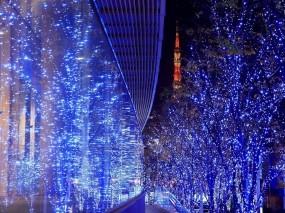 Обои Новогодние улицы: Деревья, Праздник, Подсветка, Новый год