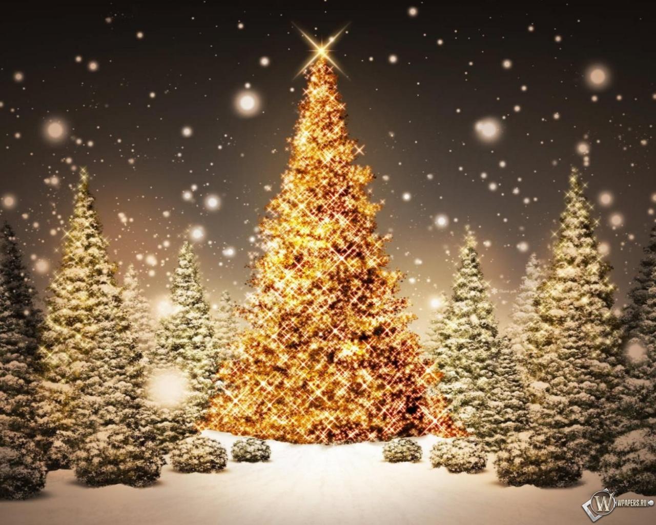 Обои рождественская елка зима снег