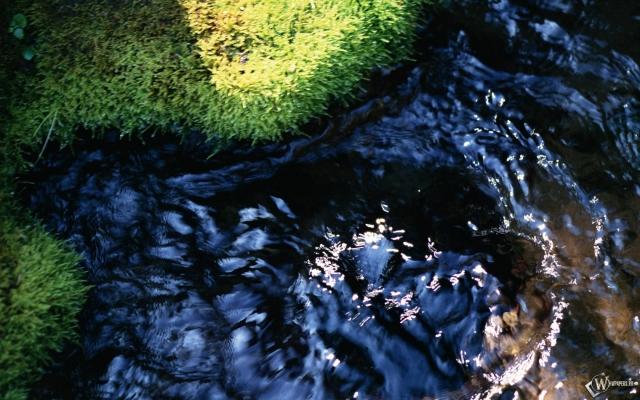 Зелёненькая травка - кристальная водичка