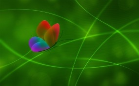 Обои Радужная бабочка: Линии, Зелёный, Бабочка, Бабочки