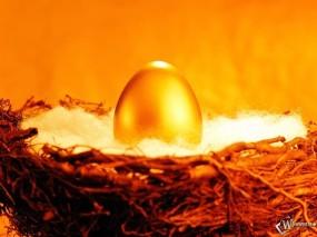 Обои Золотое яйцо: Золото, Гнездо, Жизнь, Яйцо, Деньги