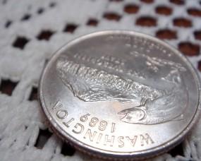 Обои Монета: Металл, Богатство, Деньги, Железо, Монеты, Деньги