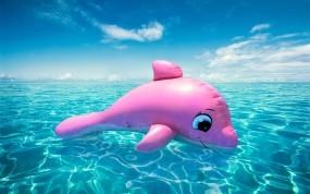 Обои Надувной дельфин: Облака, Море, Игрушка, Горизонт, Дельфин, Настроения