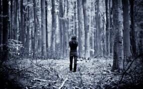Обои Одинокая девушка: Одиночество, В лесу, Одна, Настроения